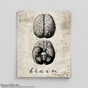 vintage brain